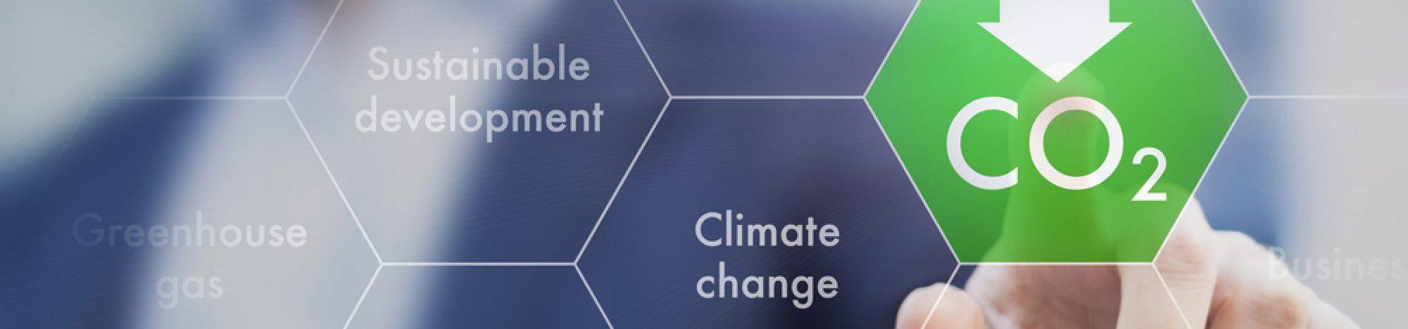 Katedra Chemii Węgla i Nauk  o Środowisku